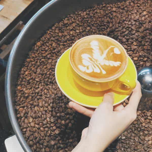 Coffee Blend